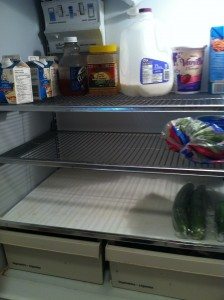 Donloree empty fridge