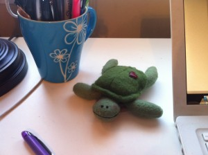 My daily 'Be a cute, rocking turtle' reminder.