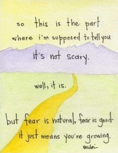 Fear is not the enemy